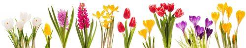 Blumenleiste